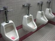 urinals installed by our Queen Creek plumbers